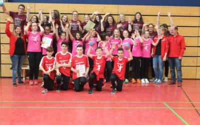 Handballteufel stellen drei Meisterteams